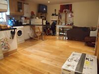 A spacious modern and clean ground floor studio apartment with garden in Mountfield Road Finchley N3