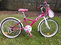 "Fully-equipped, 20"", 6-speed, pink bike: handbag front bag holder, chainguard, derailleur"