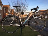 Genesis Day One Alfine - low maintenance commute/cross/touring bike