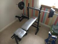 Weight Bench and Weight Tree