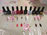 Bluesky Gel Nail Polish,10 ml- a range of different colours & Prices- please see the Description