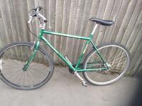 mountain bike bicycle ridgeback green race