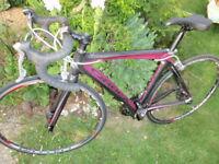 Orbea Diva full carbon road bike 49 cm ladies / womens ultegra dura ace small