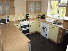 Modern and Spacious Furnished Large 1 bedroom Flat North Chingford E4 One Bed Com Garden