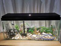 110l aquarium with pump, heater, stones. decorations and light