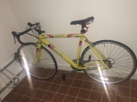 Bike for sale - accessories included ( lock , lights )