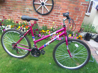 LADY'S ADULT EMMELLE VISION MOUNTAIN BIKE-UNMARKED PAINTWORK