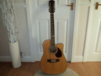 freshman 12 string dreadnaught acoustic with hardcase £100