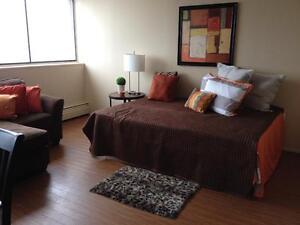 Spacious Studio Apartment - Only $800
