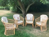 Conservatory / Garden cane chairs