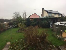 Well presented 2 bedroom detached bungalow Bishops Lydeard