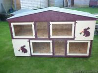 two separate rabbit/guinea pig hutches as one