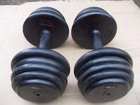 Weights - pair of 14kg dumbbells = 28kg