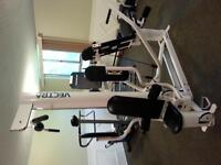 Vectra complete home gym