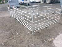 8 sheep calf pig handling holding gates hurdles farm livestock tractor