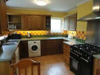 A1 rated spacious superior house share with full sky to package in all rooms