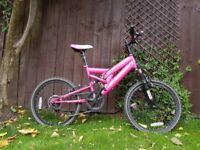 Pink Muddyfox Girl's Mountain Style Bike