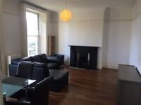 Beautiful Large 1 bed fully furnished Grand Victorian Garden flat in Brockley Conservation area
