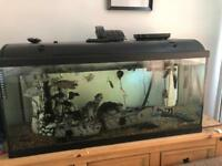 Fish tank full set up just over 3ft