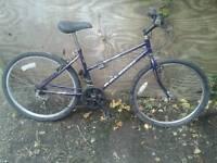 Raleigh womens mountain bike
