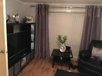 One bedroom bungalow new deco with shed and other extra s