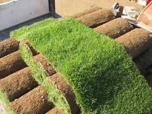Turf Supply and Lay Service Fletcher Newcastle Area Preview