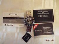 Men's citizen eco-drive Watch model no jw0111-55E