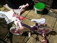 Fairy girls bike