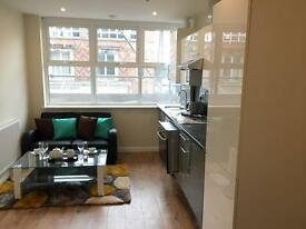 Furnished luxury 2 bed flat to let in City Centre