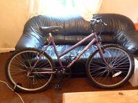 Simple ladies bike