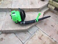 Florabest backpack petrol garden blower