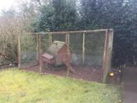 Wooden chicken house / coop & enclosure - Free just needs taking away