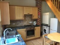 2 double bedroom house (inc en-suite) fully furnished in Crookes S10 for professionals to rent