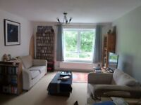 Furnished double room in cosy flat for rent