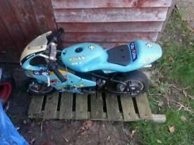50cc mini motor bike.