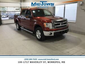 2014 Ford F-150 S/CREW XLT 301A