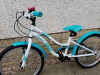 Girls 20 inch apollo bike