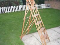 RETRO HATHERLEY STEP LADDERS