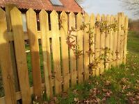 Picket Fence, 14 x 0.9m panels, 8 x 75mm posts, 1 x gate, 16 x Fencemate drive in post holders.