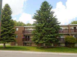 3 Bedroom Apartment Move in Ready! $975 including all utilities