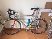 Barracuda azzuri road bike £120 ono