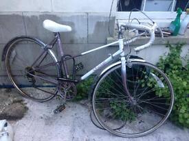 Raleigh bike for sale!