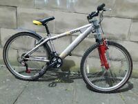 Team Saracen Xray Jump Bike