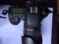Canon 7D+Sigma 17-50mm f/2.8 dc hsm