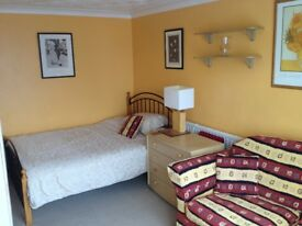Large, Clean, Double Room