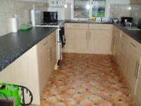 Kitchen for sale Light Ash