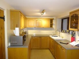 Variety of 6 wall units / End wall display unit / 5 base units / including integrated dishwasher