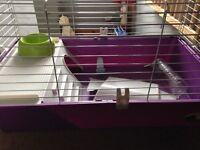 Guinea pig/rabbit indoor cage for sale
