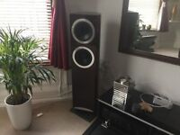 Wonderful looking and Sounding Tannoy Definition DC8T Floorstanders