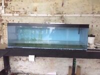 2 FISH TANKS 4FT AND A 6FT SOLD SEPARATELY